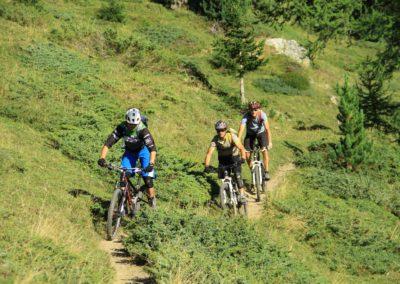 Treeline single Inspired - Inspired Mountain Bike Adventure